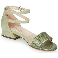 Topánky Ženy Sandále Peter Kaiser PAMILA Kaki