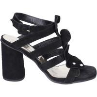 Topánky Ženy Sandále Sergio Cimadamore Sandali Camoscio Nero