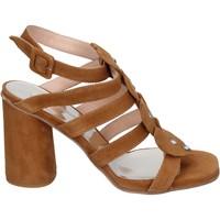 Topánky Ženy Sandále Sergio Cimadamore Sandali Camoscio Marrone