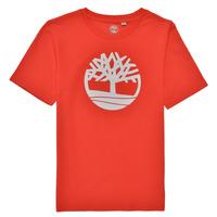 Oblečenie Chlapci Tričká s krátkym rukávom Timberland LOLLA Červená