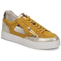 Topánky Ženy Nízke tenisky Regard HARY2 Žltá