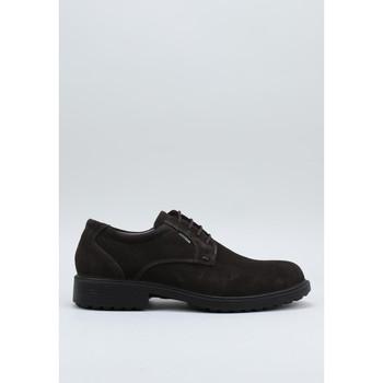 Topánky Muži Derbie Imac  Hnedá