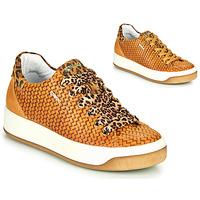 Topánky Ženy Nízke tenisky IgI&CO SHOUHAI Okrová-svetlá hnedá