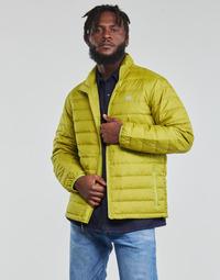 Oblečenie Muži Vyteplené bundy Levi's OASIS Zelená