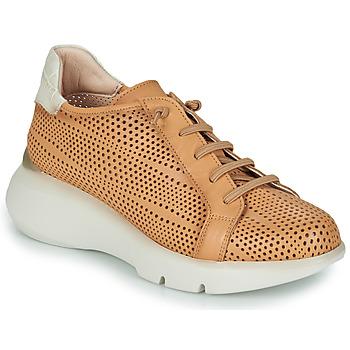 Topánky Ženy Nízke tenisky Hispanitas TELMA Ťavia hnedá / Béžová