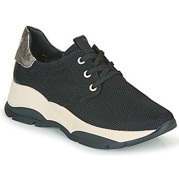 Topánky Ženy Nízke tenisky Hispanitas ANDES Čierna