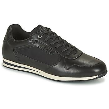 Topánky Muži Nízke tenisky Redskins LINOS Čierna