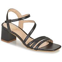 Topánky Ženy Sandále Betty London OCHANTE Čierna