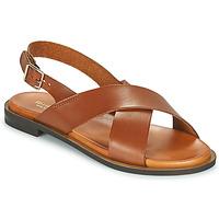 Topánky Ženy Sandále Minelli DONA Hnedá