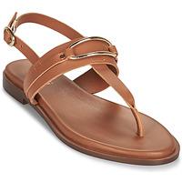 Topánky Ženy Sandále Minelli LIZA Hnedá