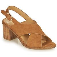 Topánky Ženy Sandále Minelli CASIMIERA Hnedá