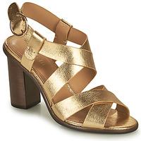 Topánky Ženy Sandále Minelli THIYA Zlatá