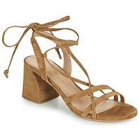 Topánky Ženy Sandále Minelli TATIA Hnedá