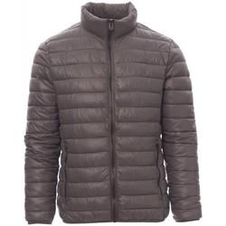 Oblečenie Muži Vyteplené bundy Payper Wear Veste Payper Informal gris