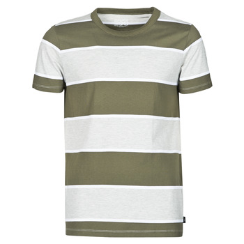 Oblečenie Muži Tričká s krátkym rukávom Esprit T-SHIRTS Kaki