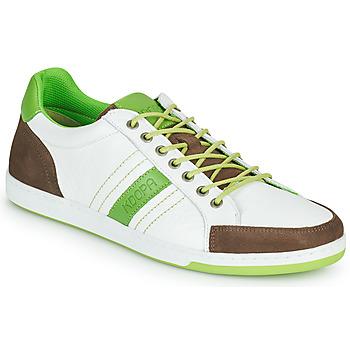 Topánky Muži Nízke tenisky Kdopa MARIANO Biela / Zelená