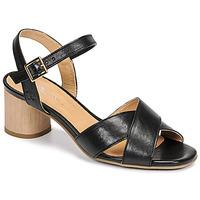 Topánky Ženy Sandále Dream in Green ODAINE Čierna