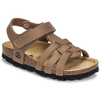 Topánky Chlapci Sandále Citrouille et Compagnie JANISOL Hnedá / Hnedošedá