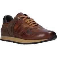 Topánky Muži Nízke tenisky Exton 591 Hnedá