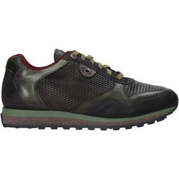 Topánky Muži Nízke tenisky Exton 340 Zelená