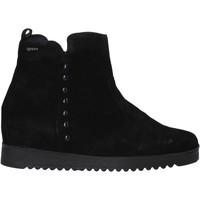 Topánky Ženy Polokozačky IgI&CO 6155033 čierna