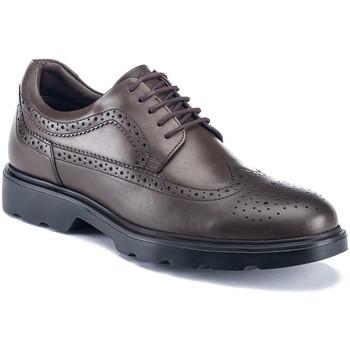 Topánky Muži Derbie Lumberjack SM67212 002 B01 Hnedá