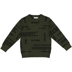 Oblečenie Deti Mikiny Melby 40B2032 Zelená
