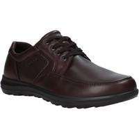 Topánky Muži Derbie Enval 6216222 Hnedá