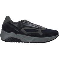 Topánky Muži Nízke tenisky IgI&CO 6142511 Modrá