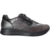 Topánky Ženy Nízke tenisky IgI&CO 6165022 Šedá