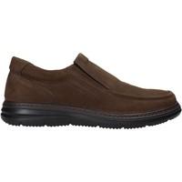 Topánky Muži Slip-on Enval 6209222 Hnedá
