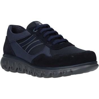 Topánky Muži Nízke tenisky CallagHan 12919 Modrá