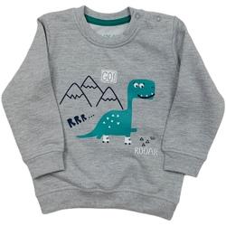 Oblečenie Deti Mikiny Losan 027-6652AL Šedá