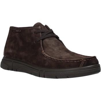 Topánky Muži Polokozačky Enval 6220822 Hnedá