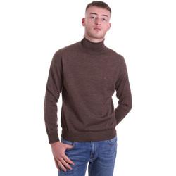 Oblečenie Muži Svetre Navigare NV11006 33 Hnedá