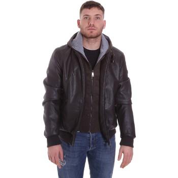 Oblečenie Muži Bundy  Roberto Cavalli FST407 Hnedá