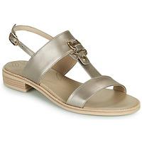 Topánky Ženy Sandále NeroGiardini PLUIE Zlatá