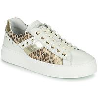 Topánky Ženy Nízke tenisky NeroGiardini MANO Biela / Leopard