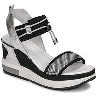 Topánky Ženy Sandále NeroGiardini CAMINO Čierna / Strieborná