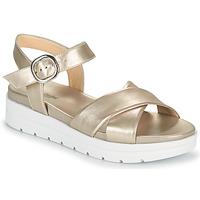Topánky Ženy Sandále NeroGiardini LONELESS Zlatá