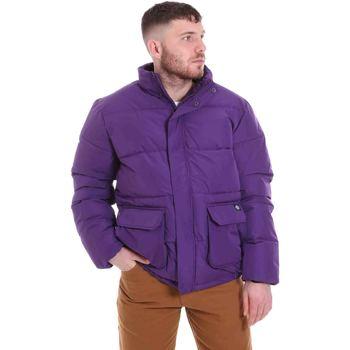 Oblečenie Muži Vyteplené bundy Dickies DK720342DEP1 Fialový