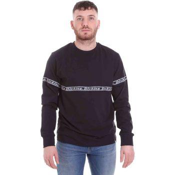 Oblečenie Muži Tričká a polokošele Dickies DK0A4X65BLK1 čierna