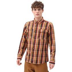 Oblečenie Muži Košele s dlhým rukávom Dickies DK0A4X5LBD01 Hnedá
