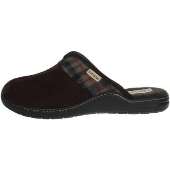 Topánky Muži Šľapky Uomodue PANNO  SCOZZESE-64 Brown