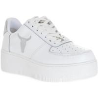 Topánky Ženy Módne tenisky Windsor Smith RICH BRAVE WHITE SILVER PERLISHED Bianco