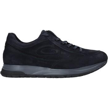 Topánky Muži Nízke tenisky Alberto Guardiani AGM004800 Modrá
