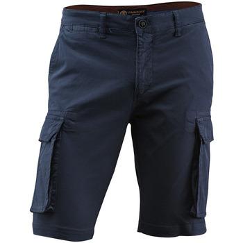 Oblečenie Muži Šortky a bermudy Lumberjack CM80747 005 602 Modrá