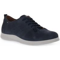 Topánky Muži Univerzálna športová obuv Grunland MICO BLU Blu