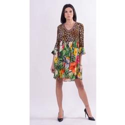 Oblečenie Ženy Krátke šaty Fracomina FR21SD1008W422N4 Bezfarebný