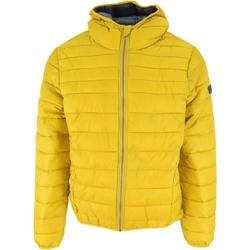 Oblečenie Muži Vyteplené bundy Lotto Bomber Cortina Hd Lg Pad Pl žltá